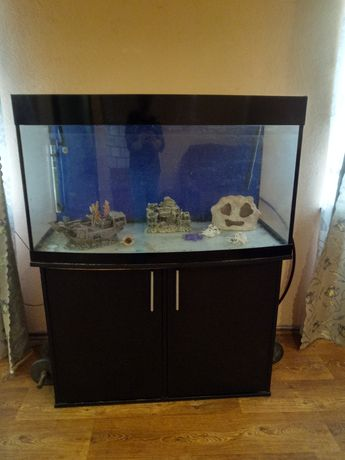 Дёшево. Большой аквариум/террариум + тумба