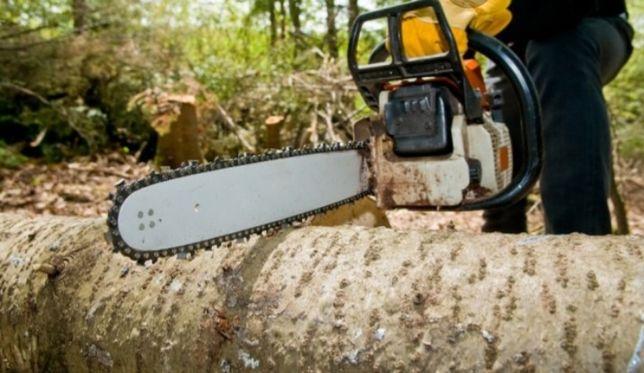 Зріз дерев та порізка дров