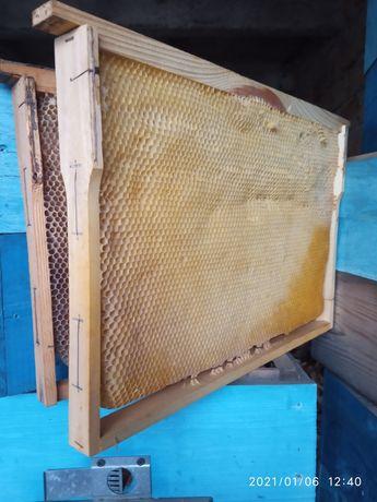 Сушь для пчел, улика, рамки