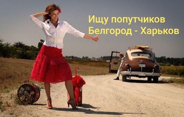 Ищу попутчиков Белгород - Харьков
