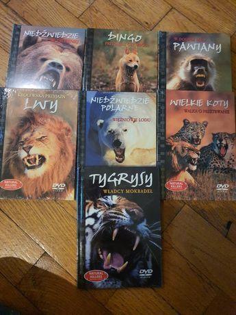 Płyty DVD naturalni zabójcy, nowe