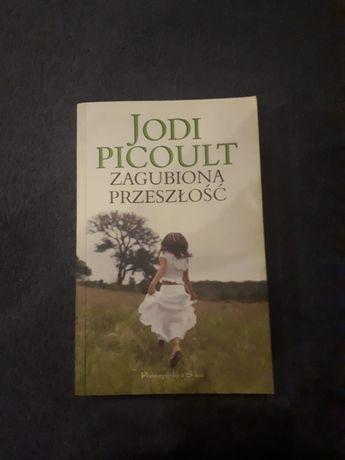 """Jodi Picoult """"Zagubiona przeszłość"""""""