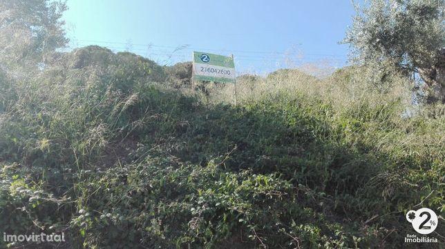 Baixa de Preço Terreno para construção - Serra da Arrábida
