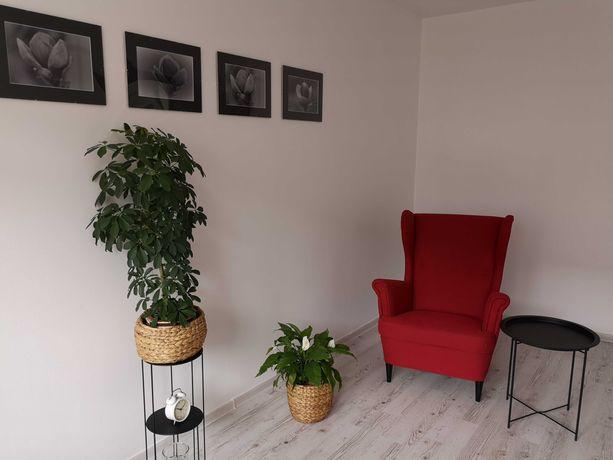 Pokój na gabinet psychoterapeutyczny