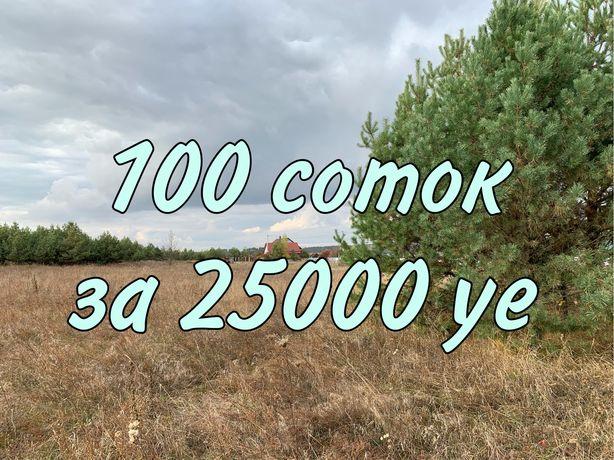 100 соток под застройку, Макаровский р-н. Житомирская трасса