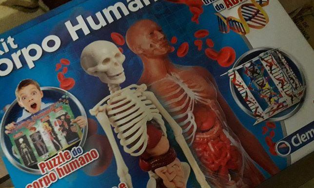 Puzzle 3d Corpo Humano