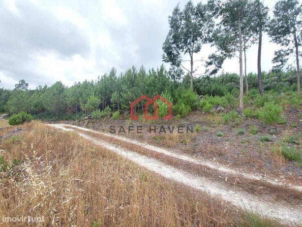 Terreno Rústico  Venda em Mangualde, Mesquitela e Cunha Alta,Mangualde