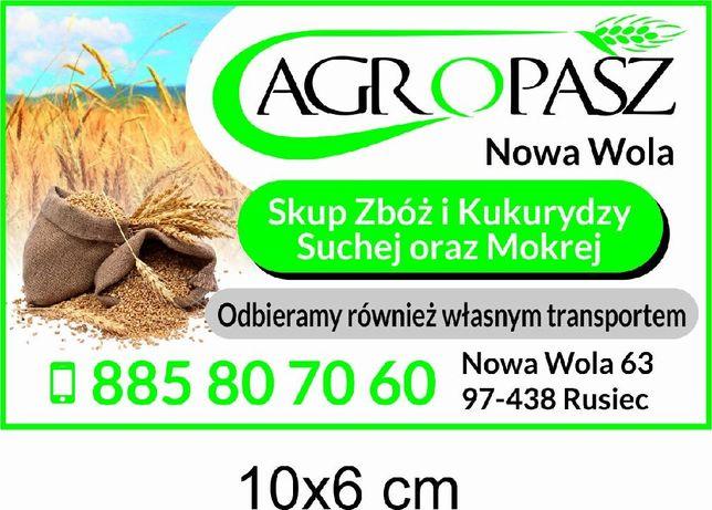 Skup zbóż odbiór zboża pszenica pszenżyto żyto owies