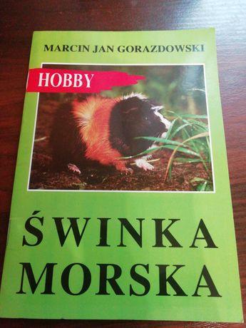 Książeczka HOBBY, wszystko co dotyczy świnek morskich.