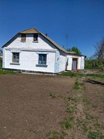 Продам будинок в селі Косівка, Володарський район.