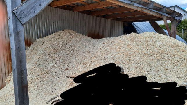 Trociny, duża ilość trocin za darmo. Drewno opałowe