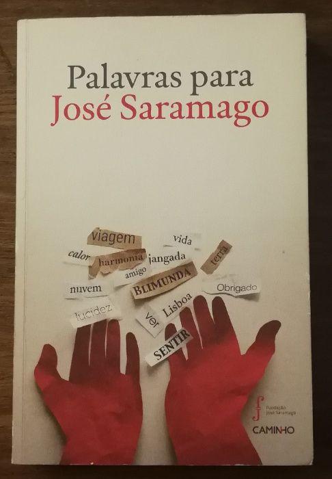 palavras para josé saramago, fundação saramago, caminho Estrela - imagem 1
