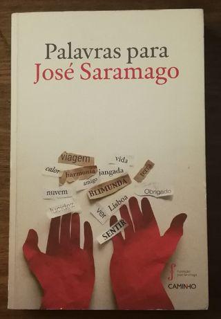 palavras para josé saramago, fundação saramago, caminho