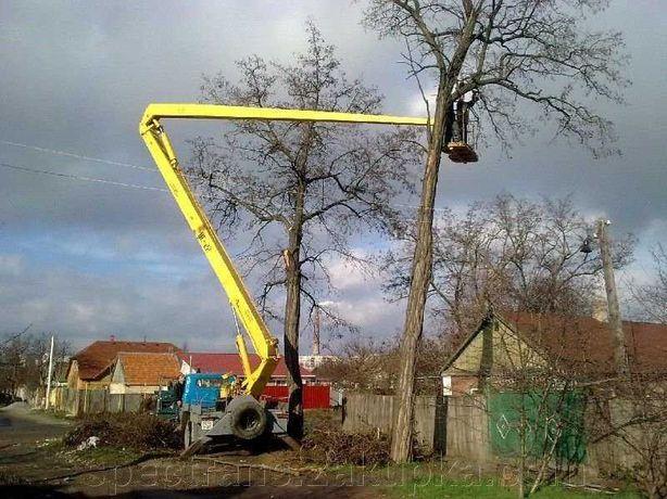 Спилим Недорого любые Аварийные Труднодоступны Высокие Деревья вышка22