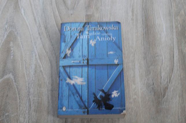 Książka, Terakowska, Tam gdzie spadają anioły