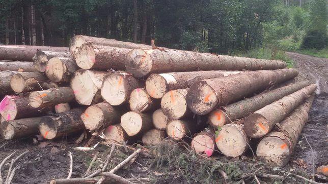 Drewno tartaczne, kłoda, dłużyca świerkowa,wałek na palety