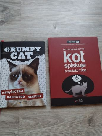 Grumpy cat, Po czym poznasz,że Twój kot spiskuje
