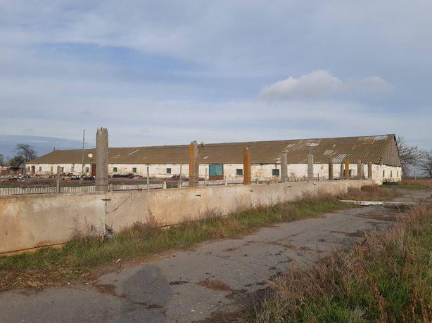 Продам ферму + 2гектара Херсонская область