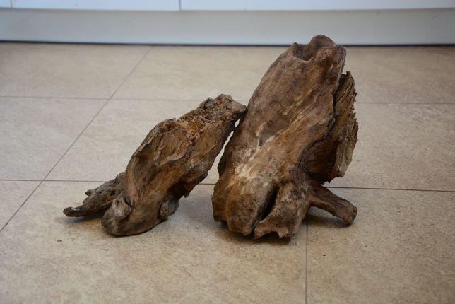Korzeń do akwarium - czarna olcha- 31cm i 28cm