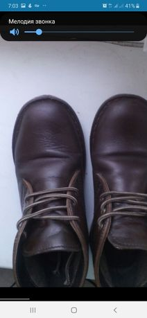 Кожаные Деми ботинки Next Бесплатно доставка укрпочтой
