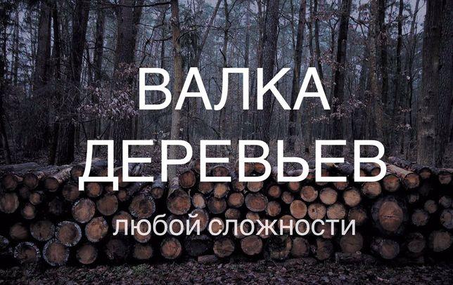Валка, обрезка деревьев. Аварийное дерево. Кронирование