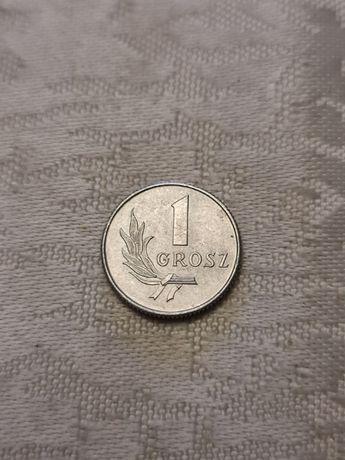 Moneta 1 grosz bez znaku mennicy z 1949 r.