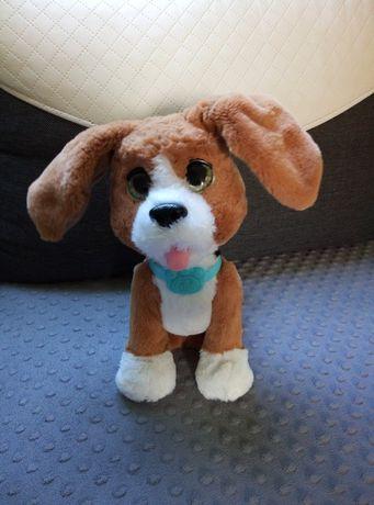 Hasbro Furreal Friends Rozgadany Charlie Rozszczekany Beagle