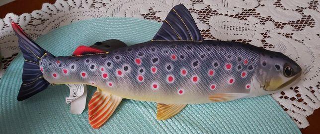 Ryba maskotka zapraszam