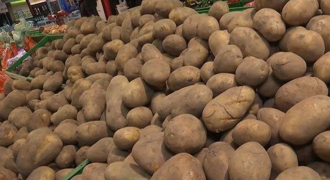 Продам крупный картофель