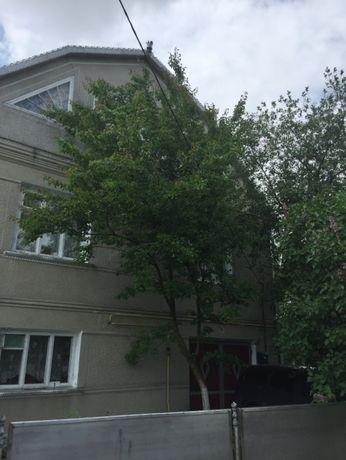Добротний цегляний будинок смт. ДУНАЇВЦІ