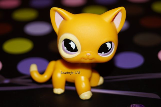 LPS shorthair #855 UNIKAT oryginał Littlest Pet Shop kotek oryginalny