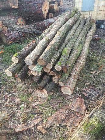 Słupki ogrodzeniowe, słupek dębowy, słupek drewniany, dąb