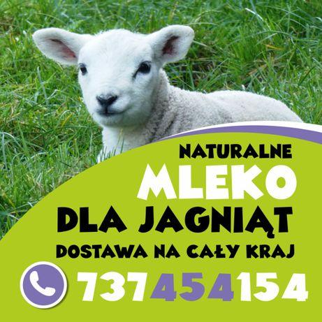 mleko w proszku dla jagniąt kozleta alpaki lamy daniele cała Polska