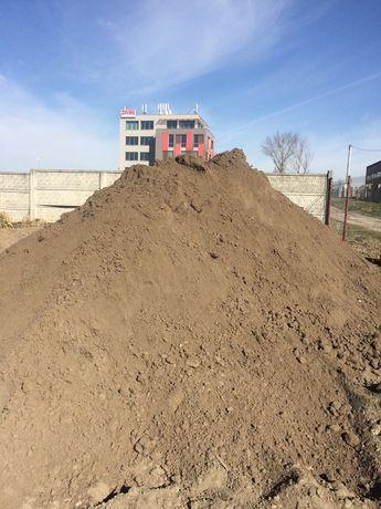 Ziemia humus ziemia ogrodowa