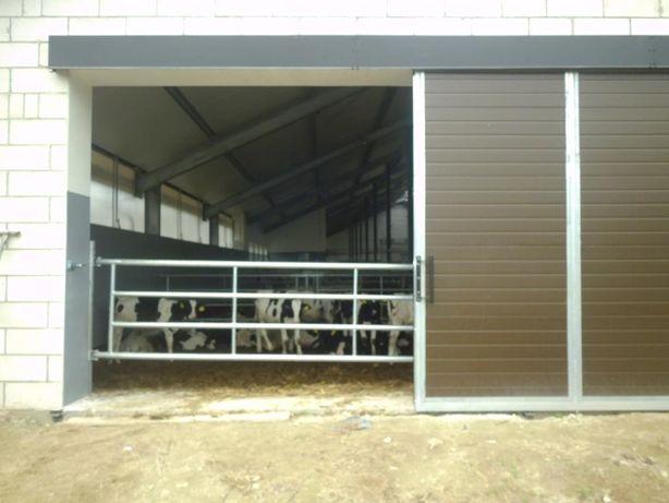 Drzwi inwentarskie ,drzwi rolnicze,drzwi gospodarcze od producenta