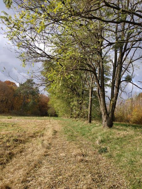 продається земельна ділянка село Турича Яворівський район