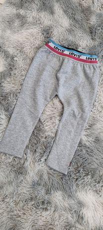 Levis spodnie dresowe dziecięce 36 miesięcy nowe szare dla dziecka