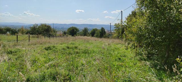 Продається приватизована земля в м.Болехів