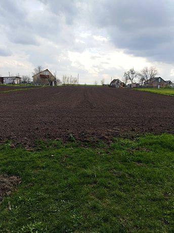 Продається приватизована земельна ділянка с.Іванівка
