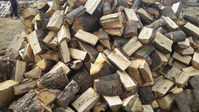 Drewno drzewo kominkowe i opalowe