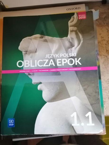 Sprzedam książke z języka polskiego, 1 klasa, WSiP