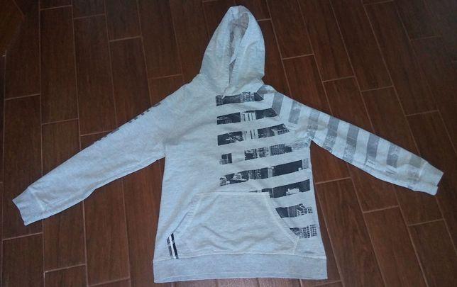 koszulka, bluza coccodrillo rozmiar 146 - jedna kolekcja