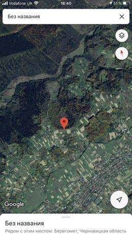 Земельна ділянка під лісом