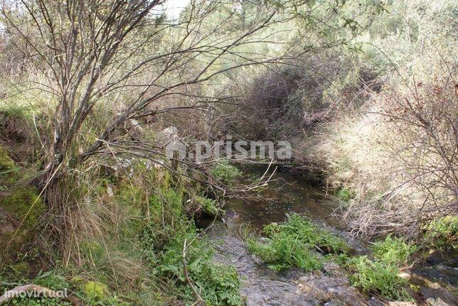 Terreno rústico para venda em Sarnadas de Ródão
