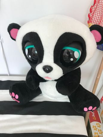 Panda interaktywna