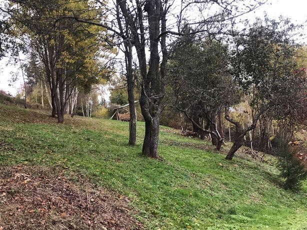 Продаж земельної ділянки в Карпатах смт Славське