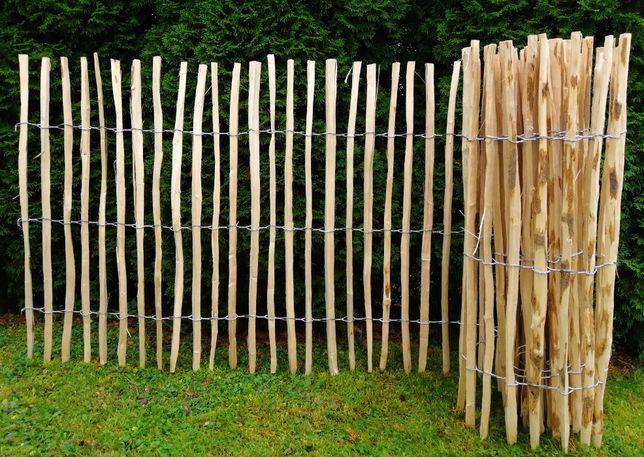 Płot leszczynowy, ogrodzenie leszczynowe, palisada, wysokość 50 cm