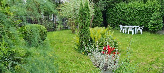 Ogródek działkowy 500m2 bardzo ładnie utrzymany z altanką.