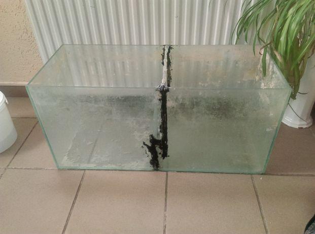 Samp Akwarium morskie