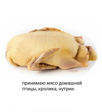 Принимаю мясо домашней птицы куры бройлер утки гуси перепела